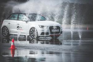 Audi Nov 4 afternoon PRO-226